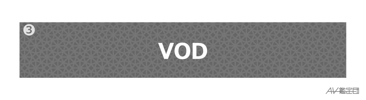 kokunai-kaigai-vod-vod1